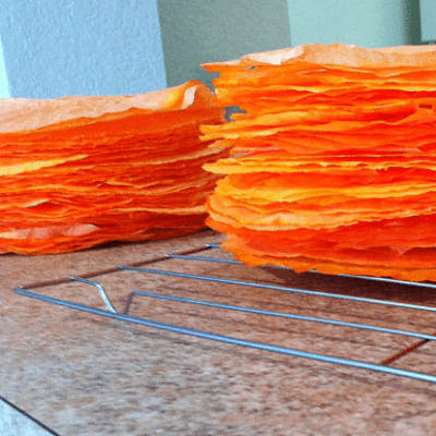How to Dye Coffee Filters with Food Coloring