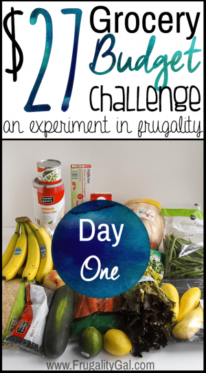 Purchased groceries for the $27 grocery budget challenge with test overlay
