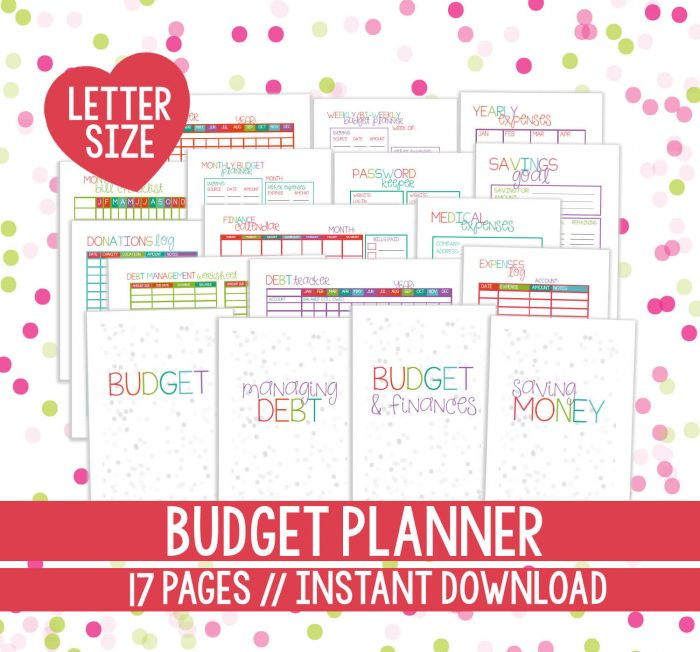 I love this colorful Printable Budget Planner from Planning Inspired.