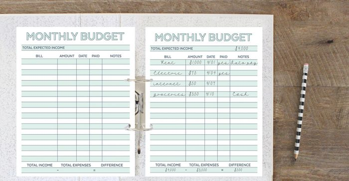 Free Printable Monthly Budget Planner Worksheet – Free Budget Planner Worksheet