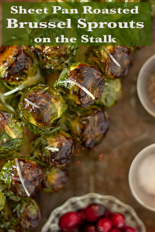 Sheet Pan Roasted Brussel Sprout Stalks with Cranberries and Sprinkled with Fresh Parmesan