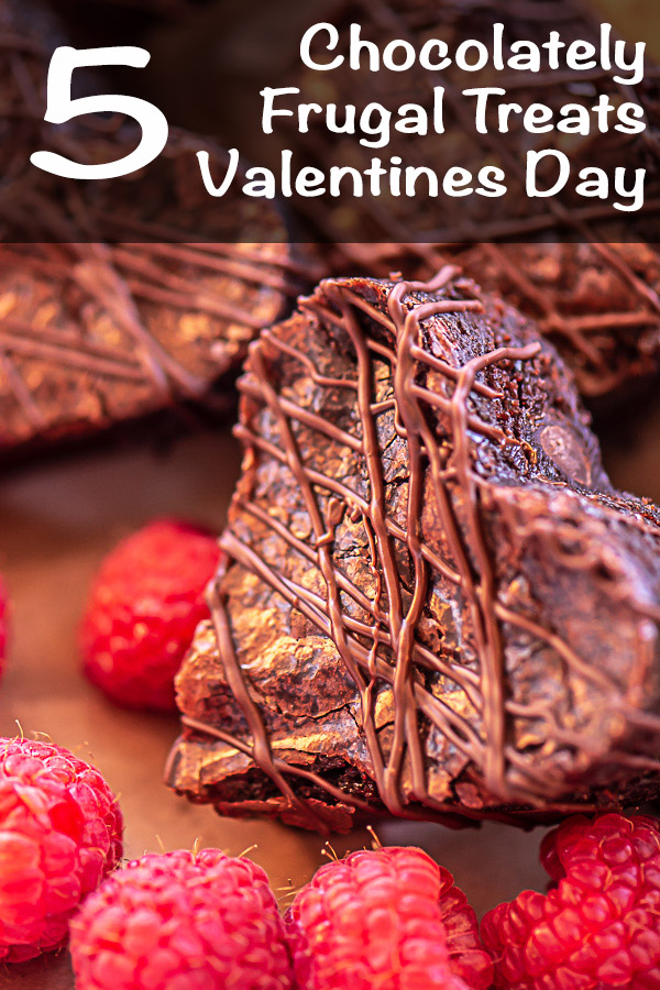 Brownie Cut Into the Shape of a Heart Surrounded by Raspberries #ValentinesDay #FrugalTreats #CheapSnacks #ValentinesTreats #Frugal #FrugalSchoolSnacks #EasyTreats