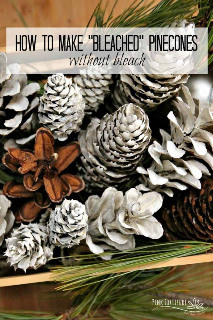White and Bleached pinecones in a bouquet