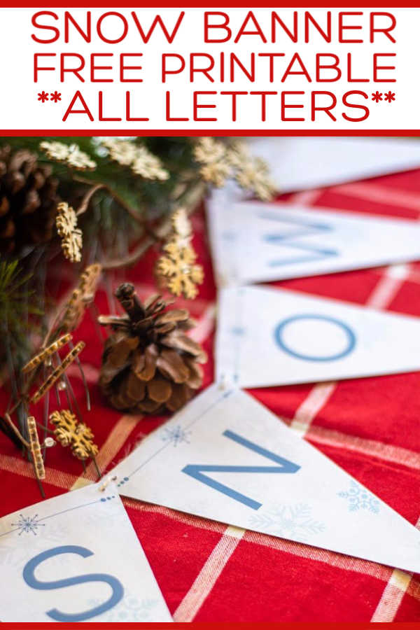 Free Printable Banner Flags with Snowflakes for a holiday bunting in your house. Here, we spelled out SNOW, but print the letters you want! #banner #snow #Bunting #christmas