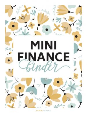 cover sheet for the free mini finance printable binder