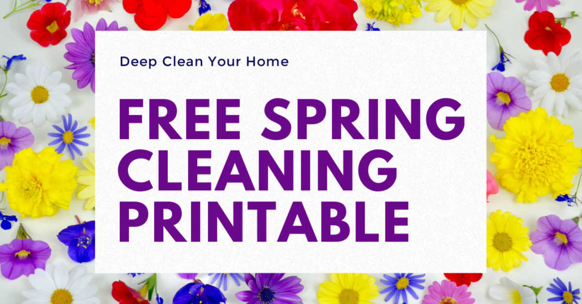 text box for free spring cleaning checklist printable on a background of bright spring flowers