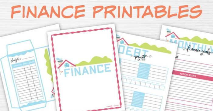 finance binder section