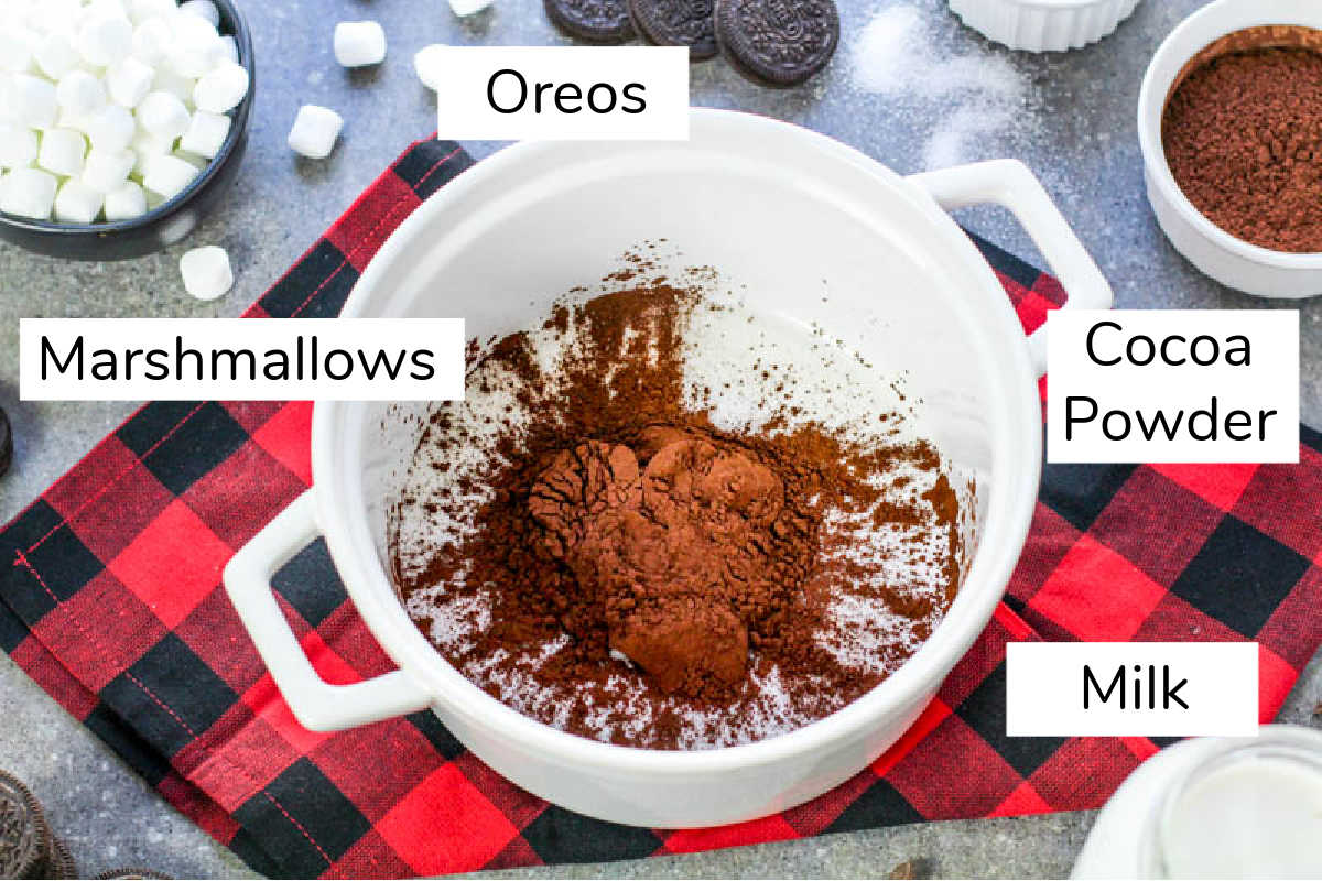 ingredients for amazing hot cocoa on holiday fabric