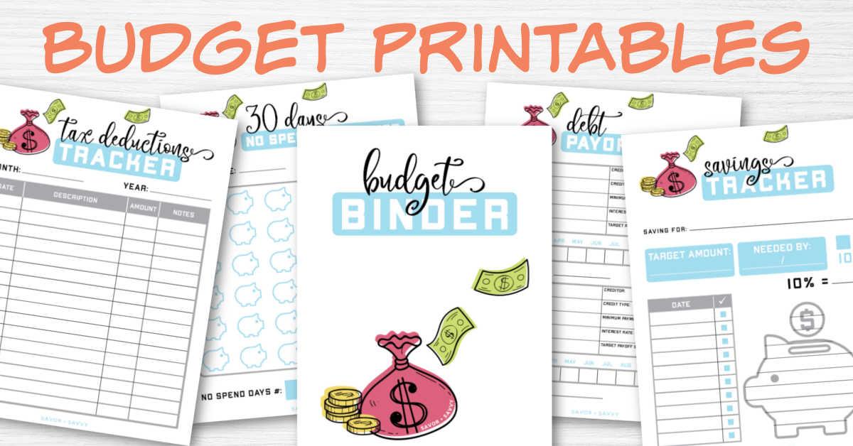 sample worksheets of budget printables.