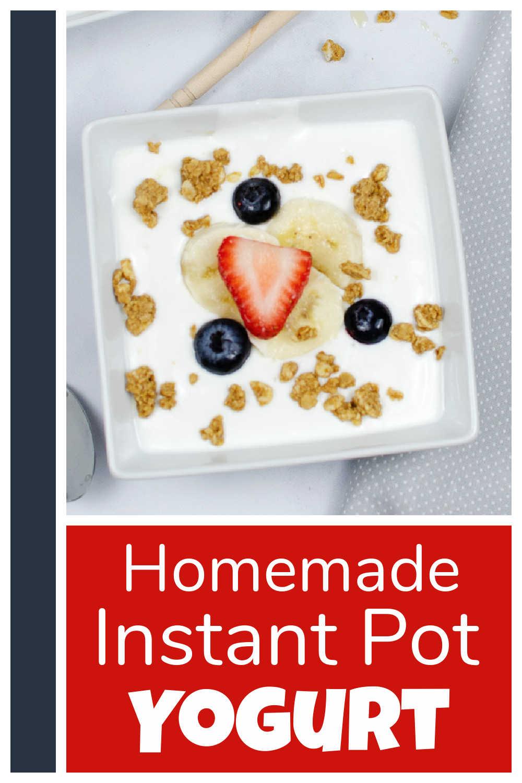 Homemade Instant Pot Yogurt {3 Ingredients}