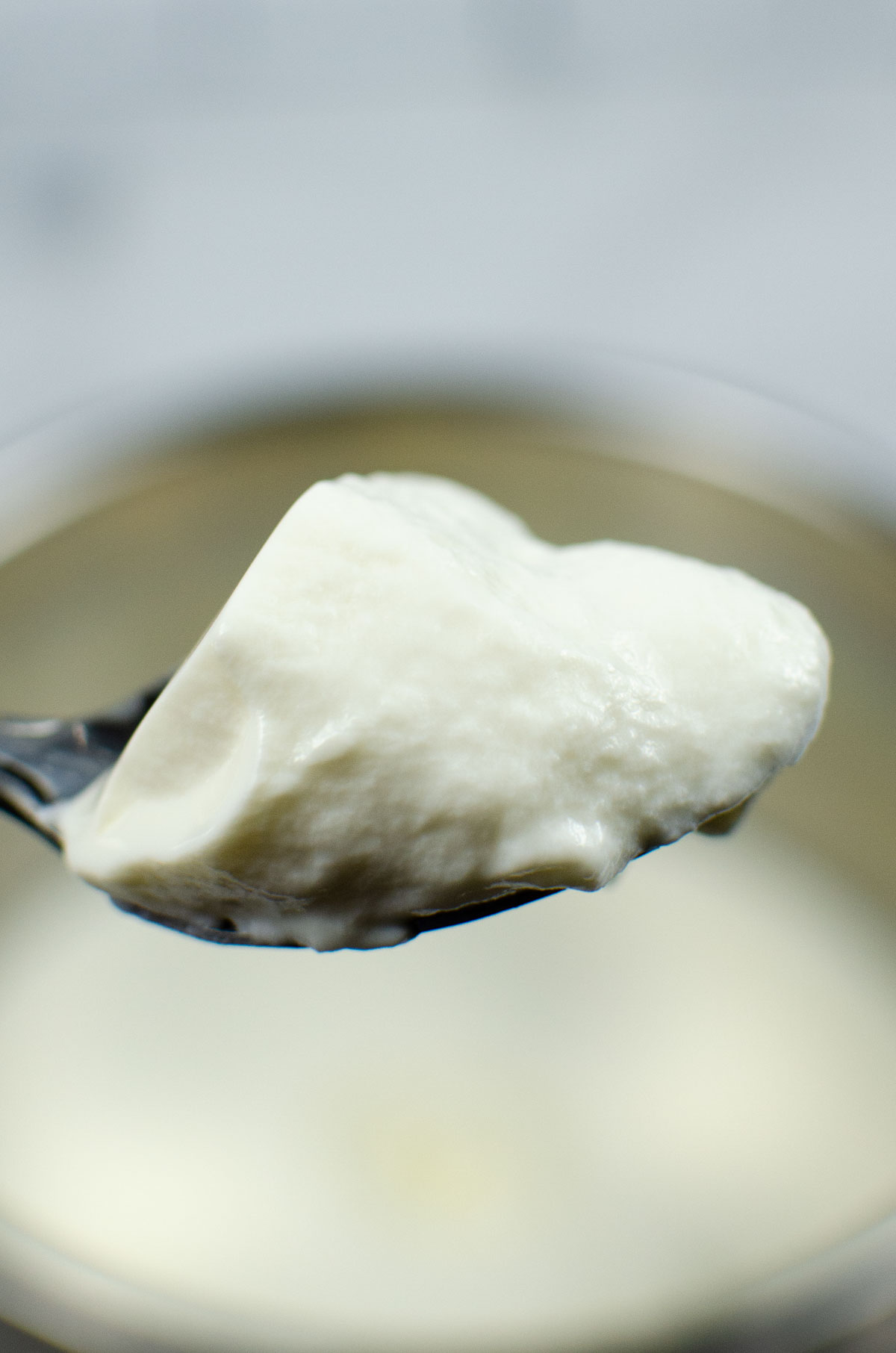 spoon full of a thick and creamy yogurt to check the consistency.