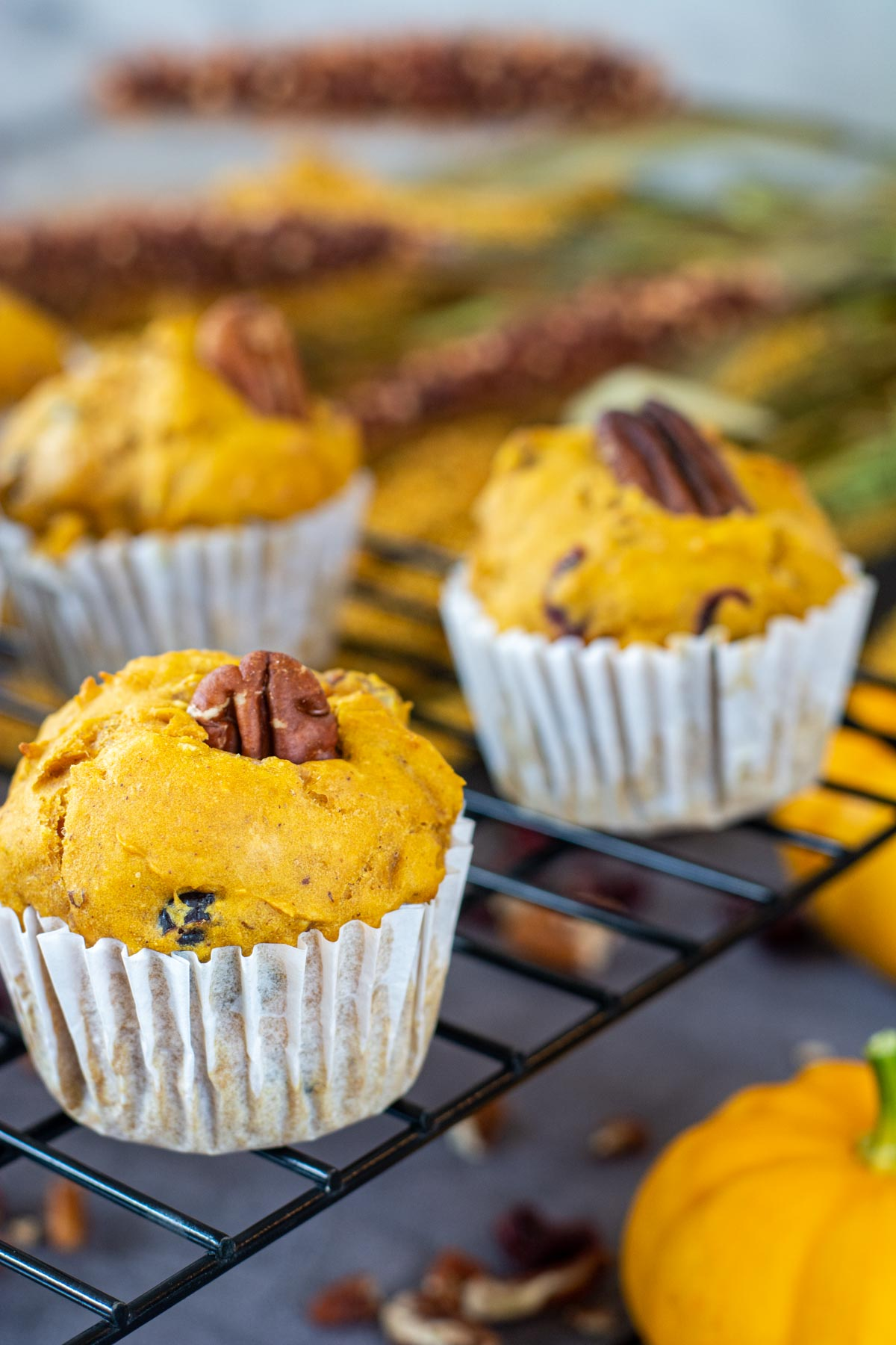 healthy pumpkin and yogurt muffin on a cooling rack.
